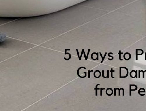 5 Ways to Prevent Grout Damage from Pets